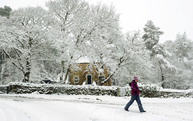 A woman walks through a falling snow near Greenhaugh in Northumberland after heavy snow fall - February 5, 2013