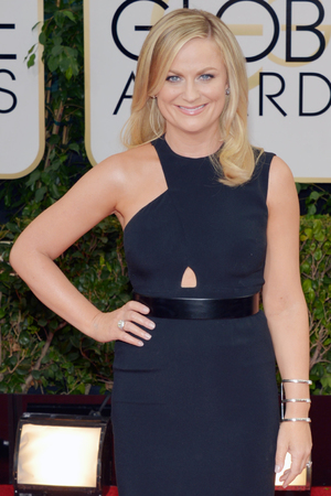 Amy Poehler at the 71st Golden Globe Awards