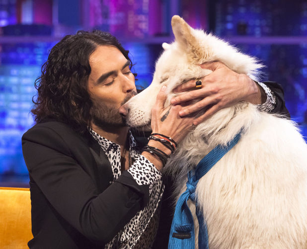 'The Jonathan Ross Show' TV Programme, london, Britain. - 16 Jan 2014 Russell Brand with Jemima Khan's dog Brian 16 Jan 2014