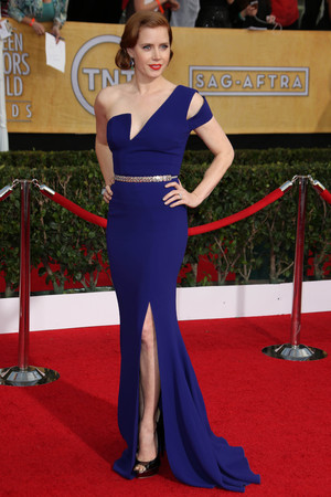 20th Annual Screen Actors Guild Awards, Arrivals, Los Angeles, America - 18 Jan 2014 Amy Adams