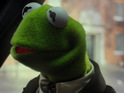 New Muppets movie stars Tina Fey, Tom Hiddleston, Cristoph Waltz.