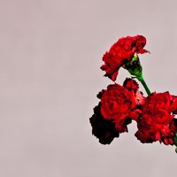 John Legend 'Love in the Future' album artwork