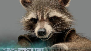 Meet the Guardians of the Galaxy: Rocket Raccoon