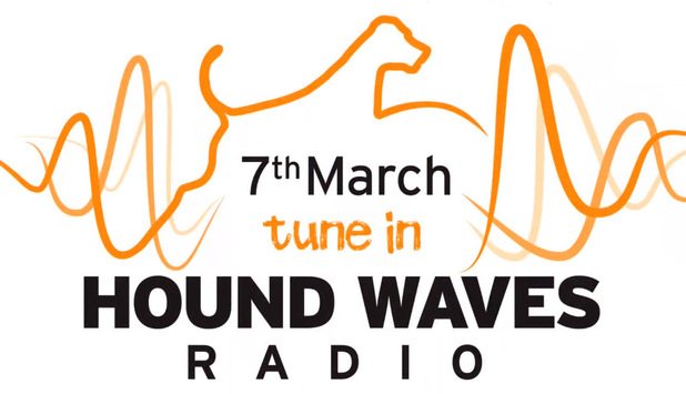 Hound Waves radio logo