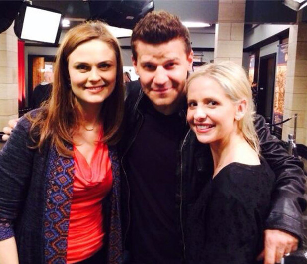 Sarah Michelle Gellar with David Boreanaz and Emily Deschanel