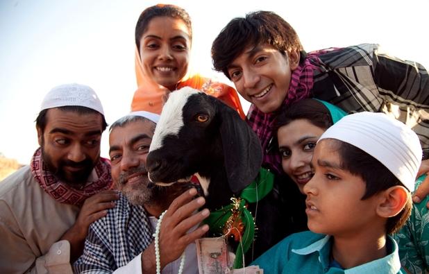 The star of Yeh Hai Bakrapur, Shahrukh the goat