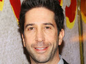 David Schwimmer attends the 'Domesticated' Opening Night at Mitzi E. Newhouse Theater
