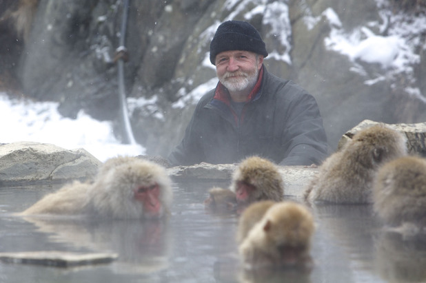 Dr George McGavin with some macaques in a thermal pool in Japan on Monkey Planet