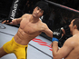 Bruce Lee to feature in EA Sports UFC