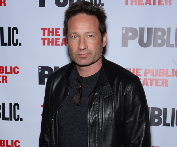NEW YORK, NY - APRIL 15: Actor David Duchovny attends 'The Library' opening night celebration at The Public Theater on April 15, 2014 in New York City. (Photo by Dimitrios Kambouris/Getty Images)