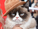 Grumpy Cat's Worst Christmas Ever will air on Lifetime on November 29.