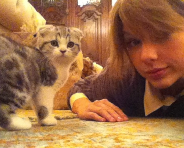 Taylor Swift and her cat in 2011