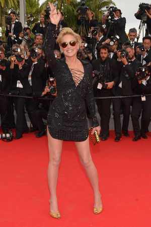 CANNES, FRANCE - MAY 21: Sharon Stone attends 'The Search' premiere during the 67th Annual Cannes Film Festival on May 21, 2014 i