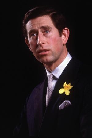 LONDON - FEBRUARY 26: Prince Charles addresses the 'Institute Of Directors' annual convention on February 26, 1985 at the Royal Albert Hall in London. (Photo by David Levenson/Getty Images)