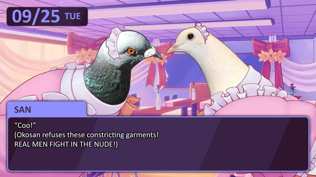 Hatoful Boyfriend is a PC visual novel about dating pigeons