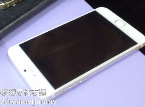 Purported image of Apple's 5.5-inch iPhone 6