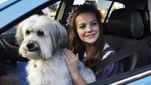 Pudsey The Dog: The Movie | Digital Spy exclusive trailer