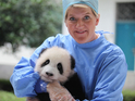 Clare Balding and Steve Leonard will observe cutting-edge animal surgeries.