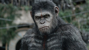 Dawn of the Planet of the Apes stars & director on Andy Serkis Oscar nomination