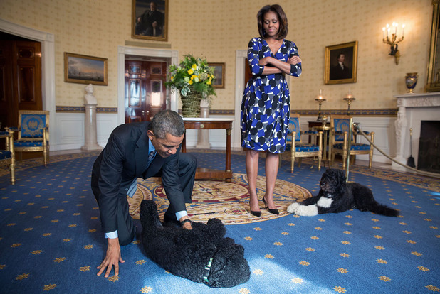Behind the Scenes with President Barack Obama, America - 2013President Barack Obama and First Lady Michelle Obama, joined by family pets Sunny and Bo, wait to greet visitors in the Blue Room during a White House tour, Nov. 5, 2013. 2013