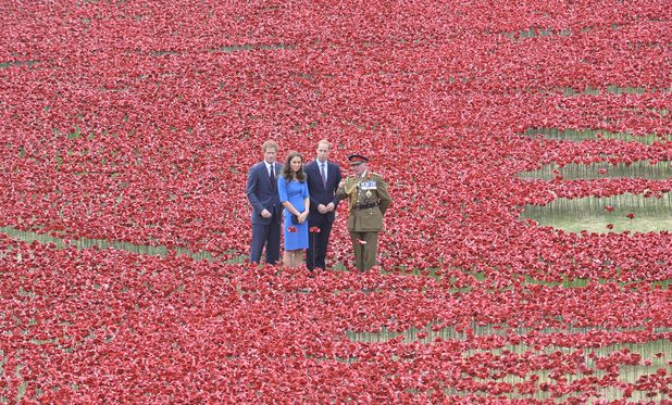 Prince Harry, Kate Middleton and Prince William visit the 'Blood Swept Lands and Seas of Red' poppy field by Paul Cummins at the Tower of London