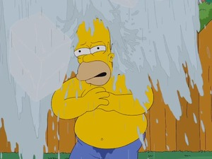 Homer Simpson takes part in the ALS ice bucket challenge