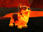World of Warcraft giving away Molten Corgi as part of 10th anniversary