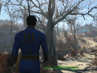 Fallout 4 is out soon, but can your PC run it? Check out the specifications