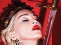 Madonna Rebel Heart world tour poster.