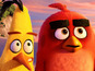 Angry Birds movie releases new images